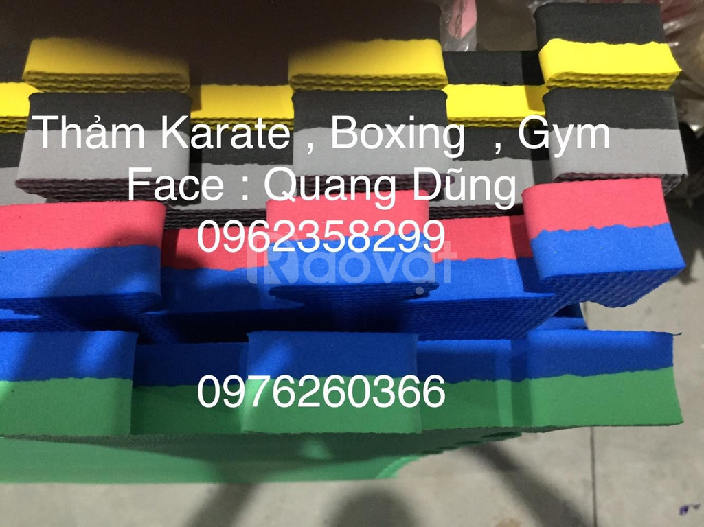 Thảm karate, boxing, gym  (ảnh 4)
