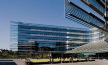 Chương trình dự bị đại học tại trường đại học Auckland