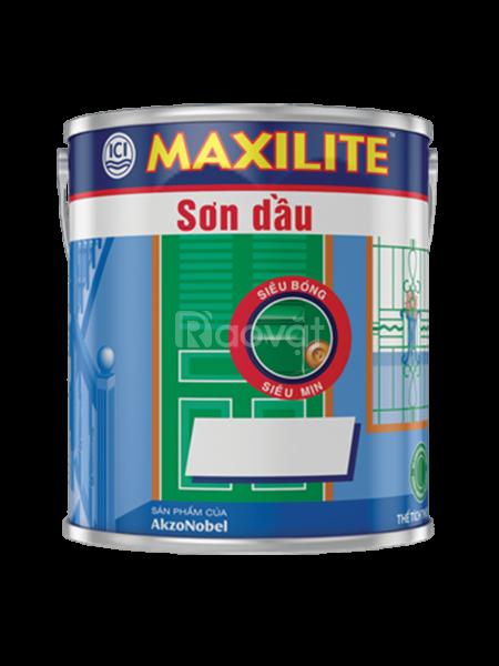 Đại lý cung cấp sơn dầu Maxilite chiết khấu tốt