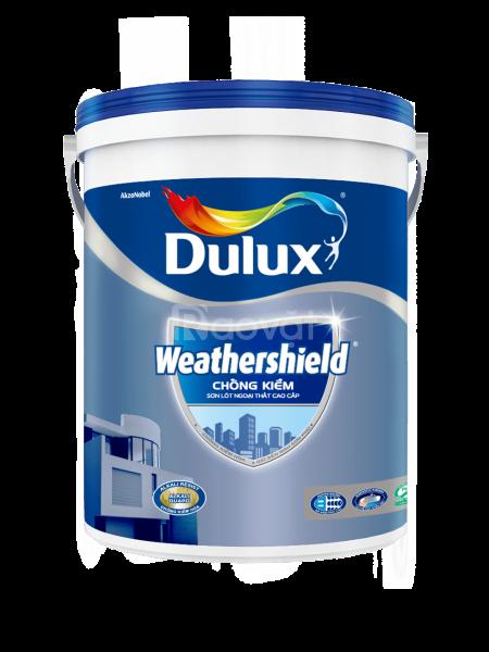 Sơn lót kháng kiềm dulux weathershield cao cấp giá rẻ