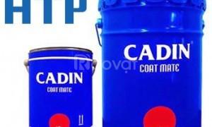 Sơn dầu Cadin giá rẻ chính hãng