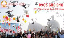 Bán cặp đất đường Hoàng Bích Sơn,Đà Nẵng B2.13, 155 m2, hướng Đông