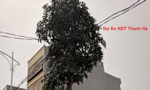 Chính chủ cần bán gấp đất B2.5 BT2 ô 5 Thanh Hà Mường Thanh
