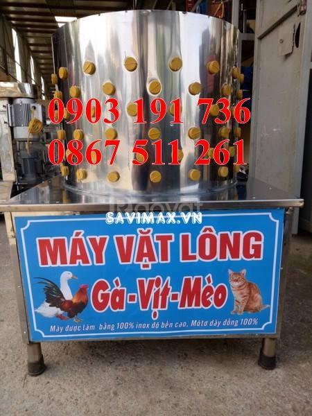 Máy vặt lông gà giá rẻ tại Hà Nội