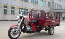 Đội ngũ xe ba gác chở thuê uy tín giá rẻ trên thị trường TPHCM