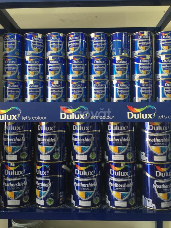 Nên sử dụng sơn Lót Dulux Weathershield ngoài trời - bảo vệ tốt (ảnh 3)