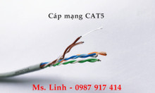 Phân phối cáp mạng CAT5, CAT6 tại Hà Nội