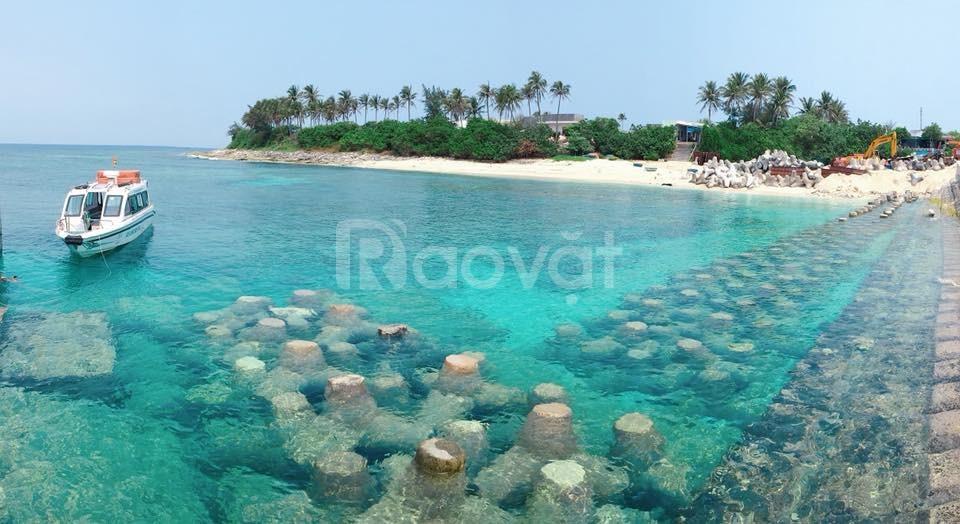 Tour du lịch đảo lý sơn ngày hè
