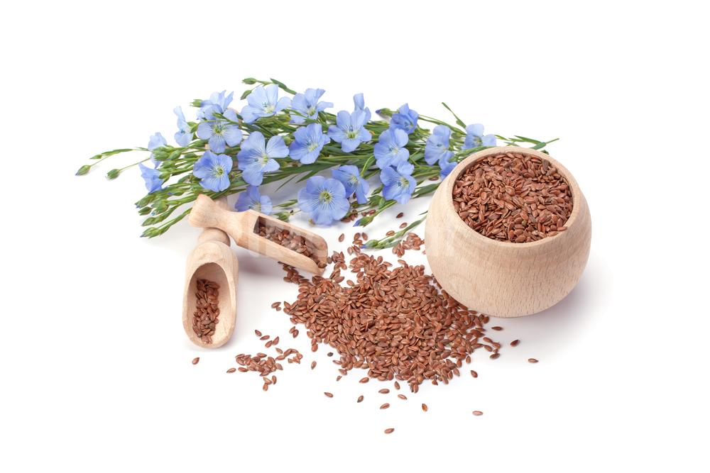 Mua và dùng bột hạt lanh tại TP HCM