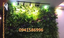 Cỏ nhựa dán tường, vách cây xanh lá, backdrop cây lá