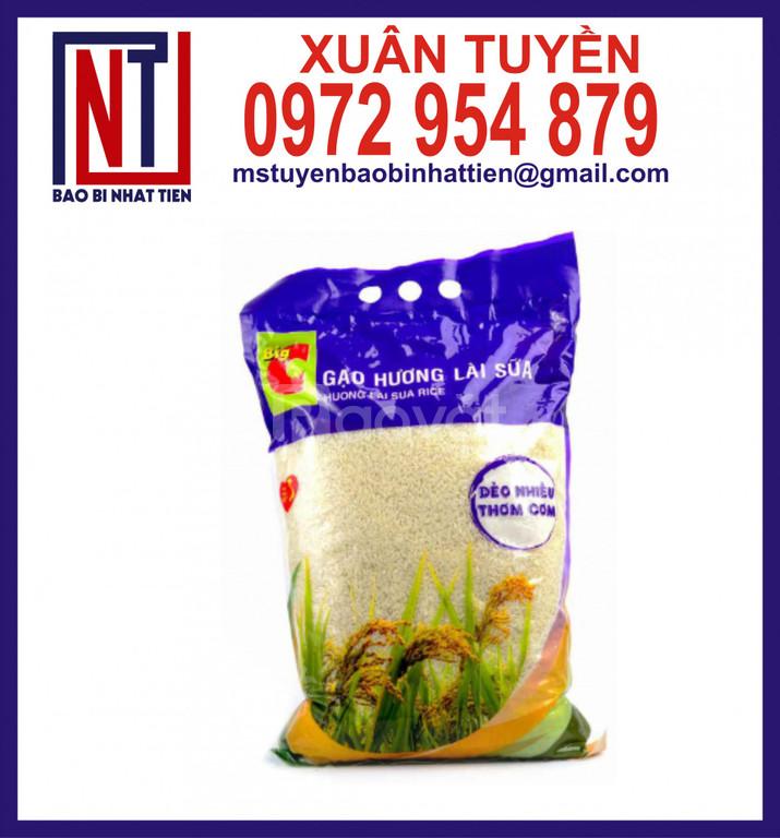 Bao bì gạo 2kg