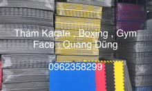Thảm karate , boxing, gym