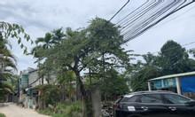 Bán 4 lô đất kiệt ô tô Hoàng Văn Thái