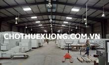 Cho thuê kho xưởng đẹp tại Khu công nghiệp Tân Hồng, Từ Sơn, Bắc Ninh