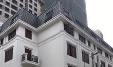 Cho thuê liền kề đẹp khu 90 Nguyễn Tuân, Trung Hòa, Nhân Chính làm VP