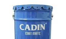 Nơi bán sơn chịu nhiệt Cadin 200 độ giá rẻ tại HCM