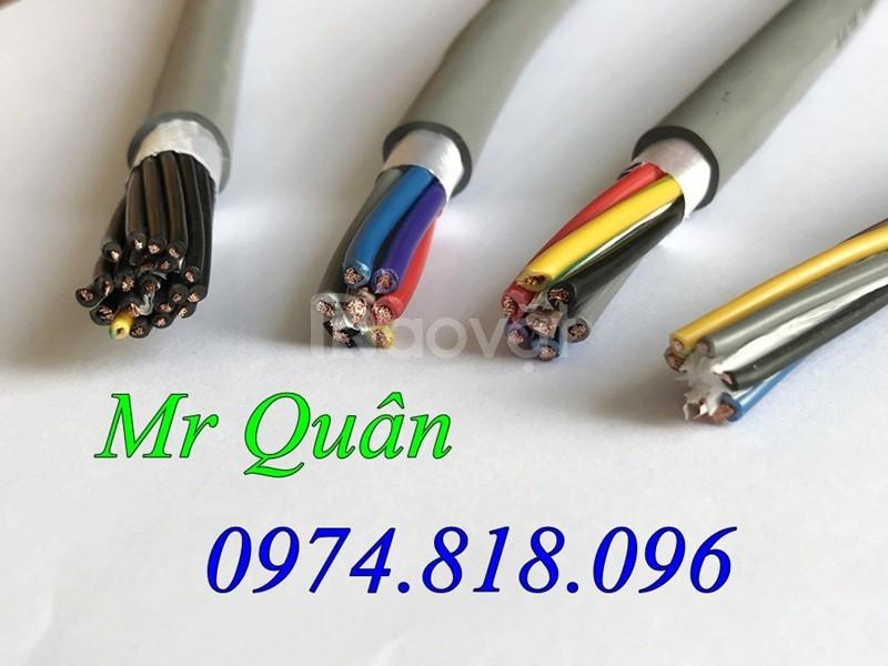 Audio Cable - Cáp điều khiển Altek Kabel