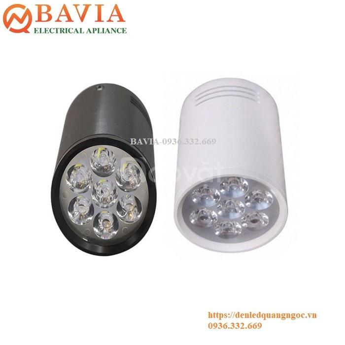 Đèn rọi ống Bơ tròn BAVIA ML-M2010-7W
