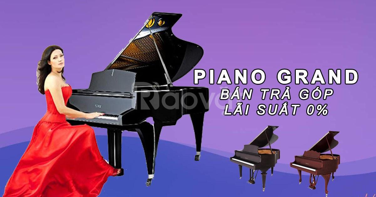 Đại lý nhạc cụ Yamaha chuyên nhập khẩu và cung cấp các loại nhạc cụ