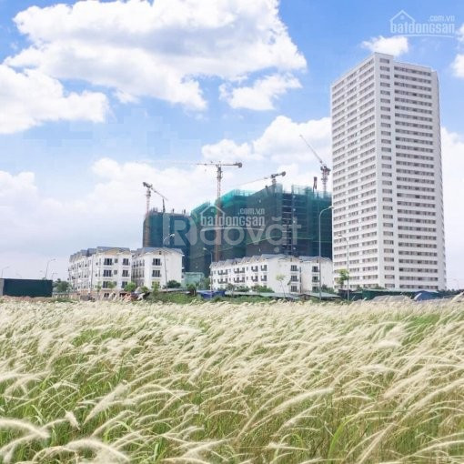 Căn góc 3PN Eurowindow Riverpark giá 1.6 tỷ/3PN