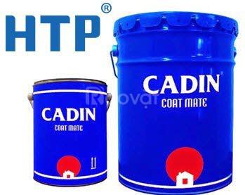 Cần mua sơn chịu nhiệt CADIN 600 độ màu bạc giá rẻ Tân Bình