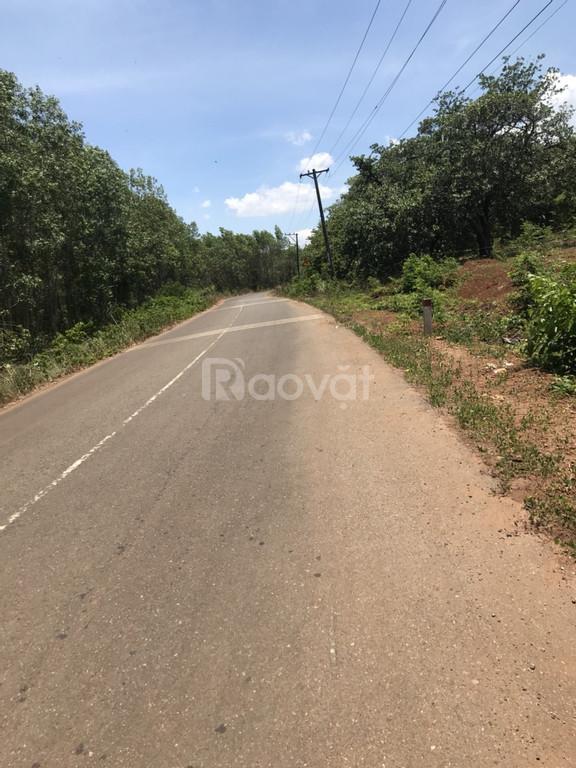 Bán đất nền khu tái định cư Phước Bình giá tốt