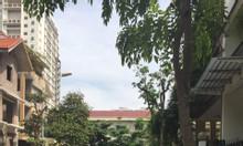 Bán biệt thự nhà vườn Hapulico Vũ Trọng Phụng 153m