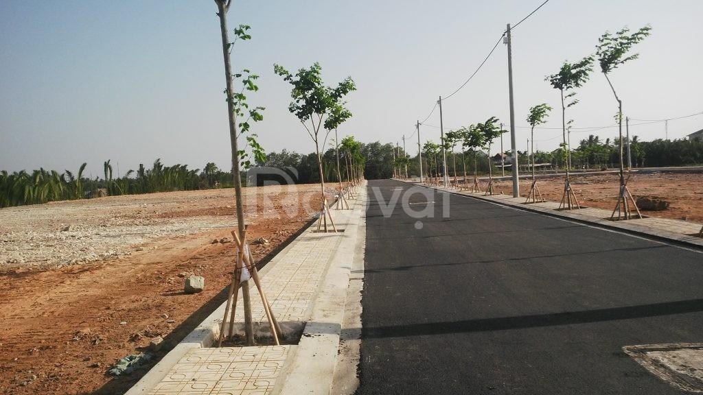 Bán đất mặt đường Dương Đình Cúc