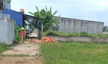 Đất 96m2 huyện Cần Giuộc,T.Long An,X. Phước Hậu, 590triệu