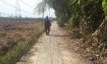 Cần bán 1 số lô đất 100% thổ cư giá rẻ tại Tân Trụ, Long An
