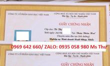 Đào tạo nghiệp vụ xuất nhập khẩu tại Đà Nẵng