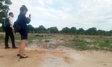 Nút giao thương của Cam Lâm – Mango City