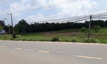 Bán đất đầu tư, đất mặt tiền TL786, Long Vĩnh, Châu Thành, Tây Ninh.