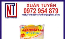 Túi đựng gạo 2kg - túi nhựa đựng gạo