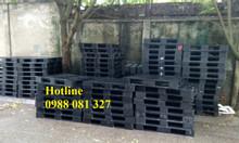 Pallet nhựa công nghiệp tại Hà Nội