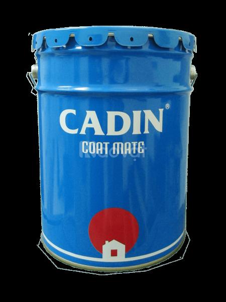 Cung cấp sơn dầu Cadin giá rẻ tại TPHCM