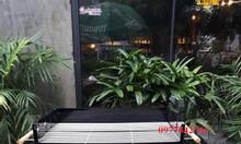 Lò nướng than hoa khung thép sân vườn Acter tree Ck350