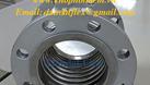 Hàng bảo hành:khớp nối mềm giảm chấn inox-dây cấp nước mềm inox (ảnh 8)