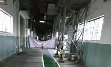 Nhà phân phối sơn kẻ vạch cho nền nhà xưởng tại Bình Dương