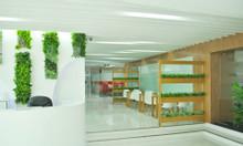 Văn phòng ảo giá rẻ quận Tân Bình