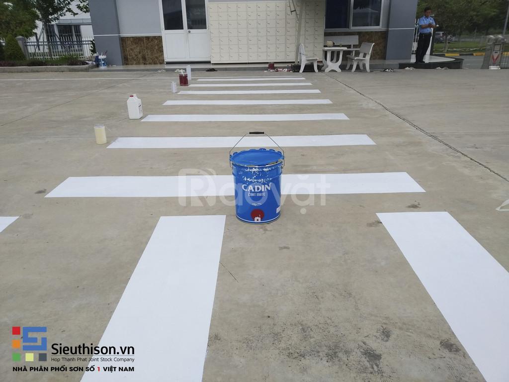 Thi công sơn kẻ vạch cho nhà xưởng, bãi đậu xe tầng hầm tại Vũng Tàu