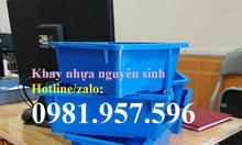 Khay nhựa A4, khay linh kiện a4, khay đựng ốc vít, khay đựng dụng cụ