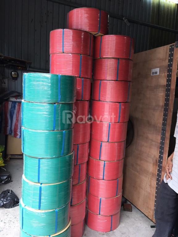 Dây đai nhựa PP giá rẻ tại Bình Phước