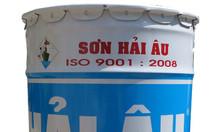 Đại lý chuyên bán sơn epoxy Hải Âu chính hãng giá rẻ tại TPHCM