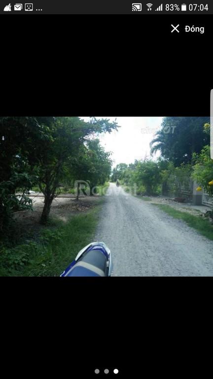 Bán đất gần ngã tư Bình Minh, Châu Thành, Tây Ninh.