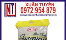 Bao bì đựng gạo 5kg PA/PE