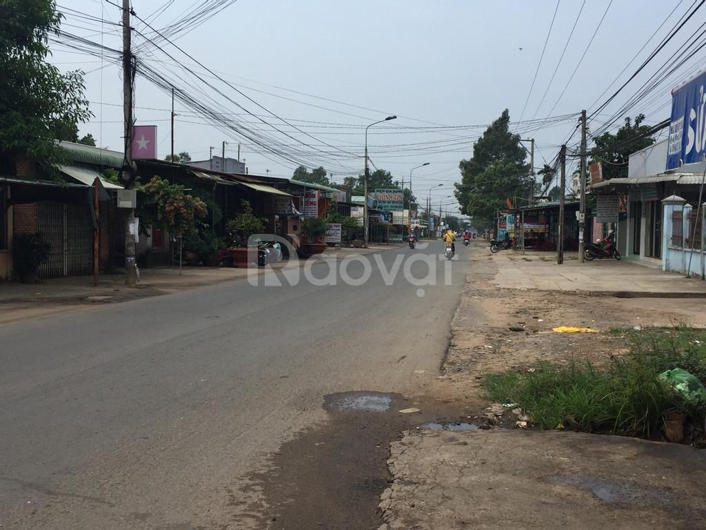 Bán đất Bàu Cạn, đón đầu thành phố sân bay Long Thành chỉ 500triệu/sào