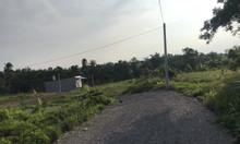 Đất 330m2 sổ hồng riêng, thổ cư liền kề kcn mới mở
