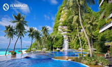 Flamingo Cát Bà Resort - Biệt thự xanh trên cao giữa lòng di sản
