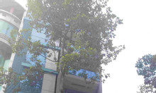 Bán nhà hầm 7 lầu MT Ký Con, P Nguyễn Thái Bình. DT 4x20m nở hậu 8m